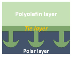 Chemical interaction by tie layer